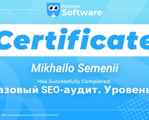 Сертификат Семений Михаила о обучении SEO аудитам-2